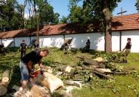 Pomoc przy usuwaniu skutków nawałnicy na terenie gminy Paradyż
